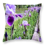 Iris Along Fence - Country - Flower Throw Pillow