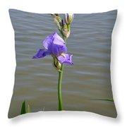Iris At The Lake Throw Pillow
