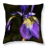 Iris Baroque Throw Pillow