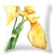 Iris Blooms  Throw Pillow by Sherry Harradence