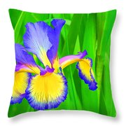 Iris Blossom Throw Pillow