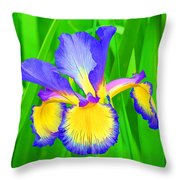 Iris Blossom Throw Pillow