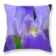 Iris Close Up 1 Throw Pillow