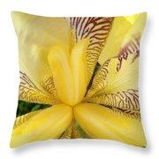 Iris Close Up Throw Pillow