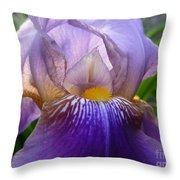 Iris Dancing In The Spring Throw Pillow