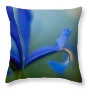 Iris Edge Throw Pillow