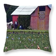 Iris Field And Barn Throw Pillow