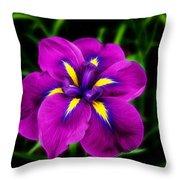 Iris Flower Throw Pillow