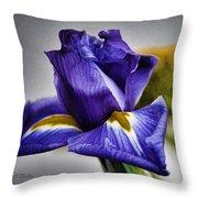 Iris Flower Macro Throw Pillow