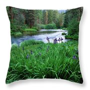 Iris Flowers By The Metolius River Throw Pillow