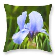 Pale Purple Iris - Impressions Of Spring Throw Pillow