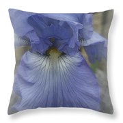 Iris Heart Throw Pillow by Kay Novy