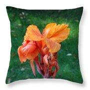 Iris In Autumn Throw Pillow