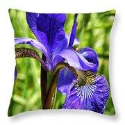 Iris In Grass Throw Pillow