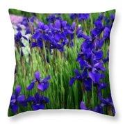 Iris In The Field Throw Pillow