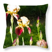 Iris In The Sun Throw Pillow