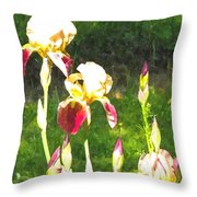Iris In Watercolor Throw Pillow