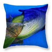 Iris On Blue Throw Pillow