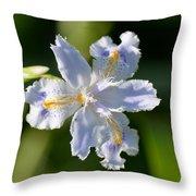 Iris Pacifica Throw Pillow
