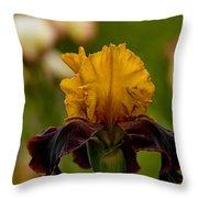 Iris Pictures 149 Throw Pillow