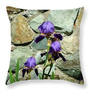 Iris Portrait Throw Pillow