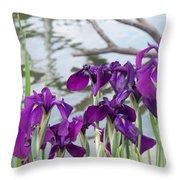 Iris Purple Lavender Throw Pillow