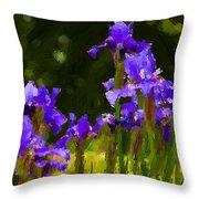 Iris Radiance Throw Pillow