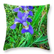 Iris Swirl Throw Pillow