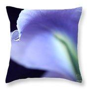 Iris Tear Of Joy Throw Pillow