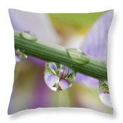 Iris Versicolor Reflection Throw Pillow