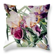 Watercolor Of Tall Bearded Irises I Call Iris Vivaldi Spring Throw Pillow