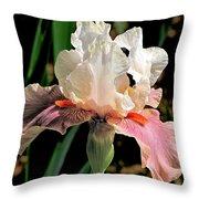 Iris White To Pink Throw Pillow
