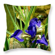 Iris With Frog Throw Pillow