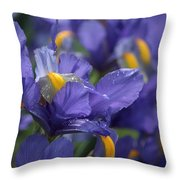 Iris With Raindrops Throw Pillow