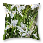 Irises Dancing In The Sun Painted Throw Pillow