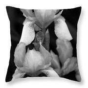 Irises In Black And White Throw Pillow