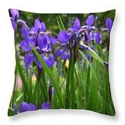 Irises In Spring Throw Pillow