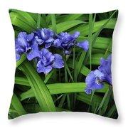 Irises Throw Pillow