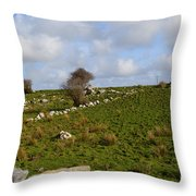 Irish Farms And Fields Throw Pillow