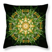 Irish Influence 3 Throw Pillow