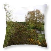 Irish Landscape In Spring Throw Pillow