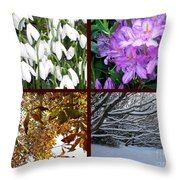 Irish Seasons Throw Pillow