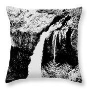 Iron Creek Falls Bw Throw Pillow