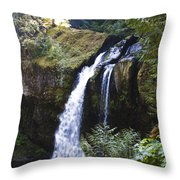 Iron Creek Falls Throw Pillow