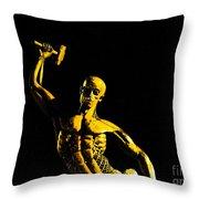 Iron Man II Throw Pillow by Al Bourassa