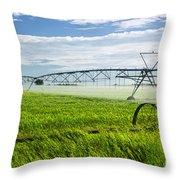 Irrigation On Saskatchewan Farm Throw Pillow by Elena Elisseeva
