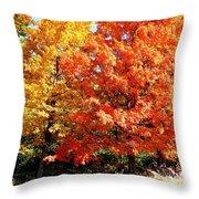 Is Autumn Already Throw Pillow