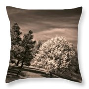 ...is But A Dream Throw Pillow