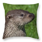 Is It Dinner Time Throw Pillow