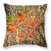 Is It Live Or Is It Memorex Throw Pillow by Frozen in Time Fine Art Photography